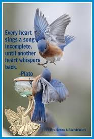 everyheart