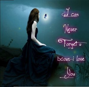 Beautiful Love quotes I can never forget you because i love you