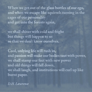 dhlawrence_travel_quote