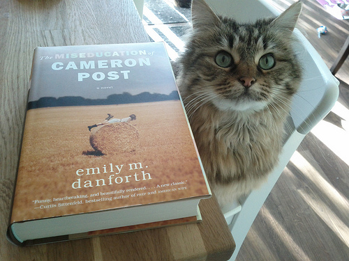 misseducation of cameron post cat