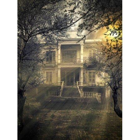 old abandonet haunted house hidden by increasing vegetation