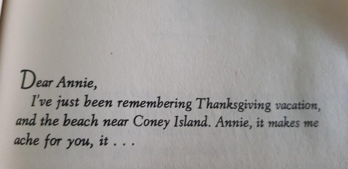 Annie on my mind by Nancy Gardner thanksgiving vacation letter